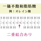 飽和脂肪酸と不飽和脂肪酸の違いは二重結合