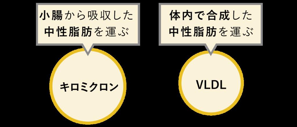キロミクロンとVLDL