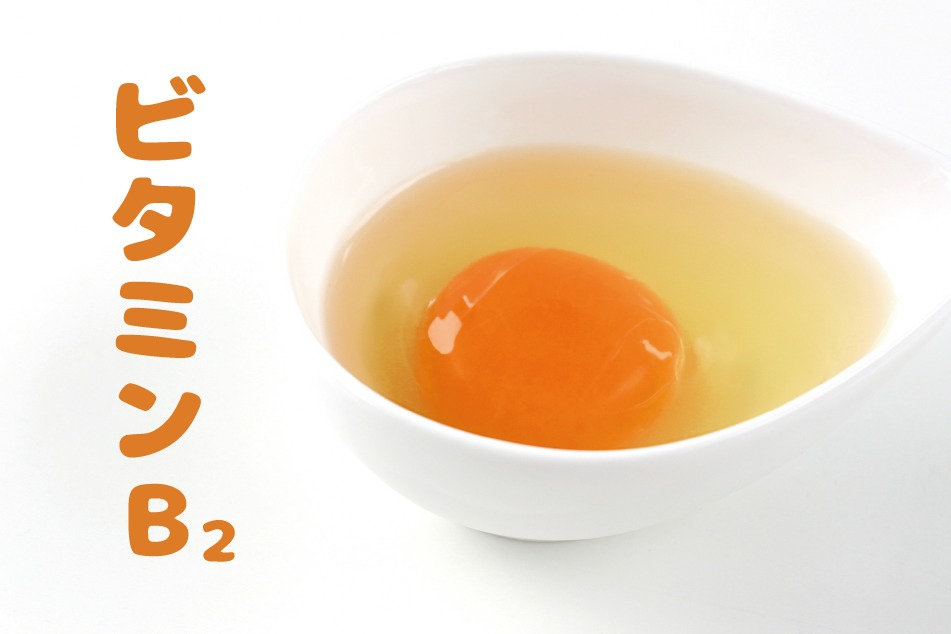 ビタミンB2_アイキャッチ